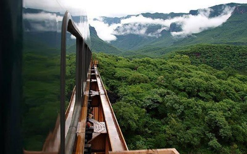 Vista de El Chepe Express, viaja en tren en México